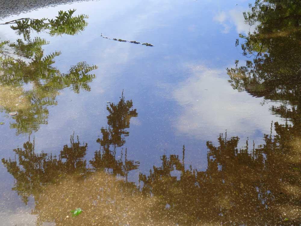 himmels-spiegel