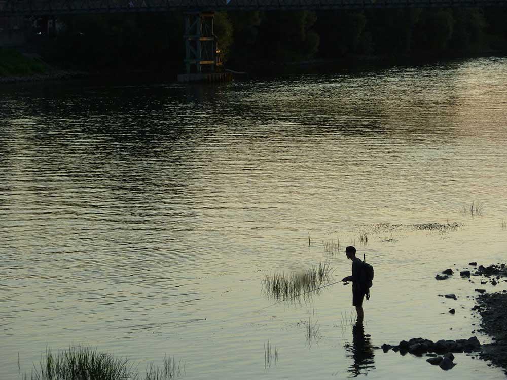 Regensburg Fischer im Gegenlicht Donau