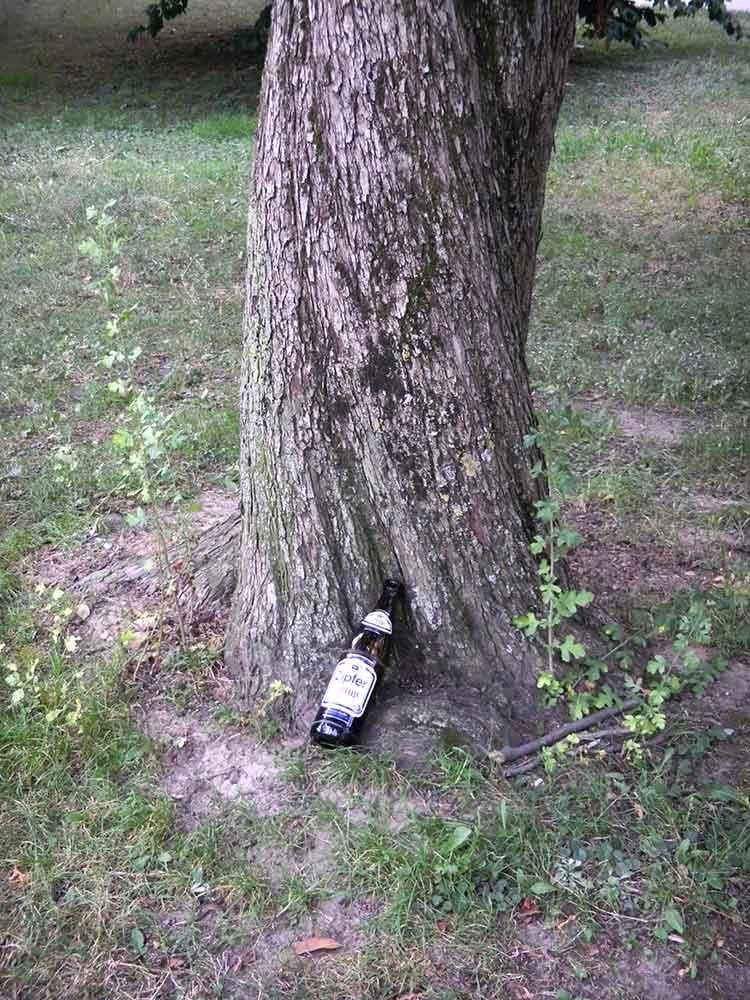 Müde Bierflasche lehnt an Baum