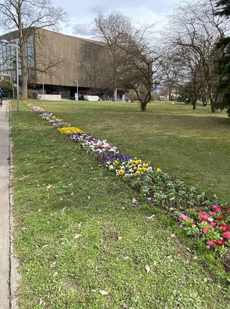 Frühlings Erfüllung