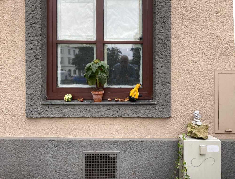 Spiegelung mit Kürbissen, Kastanien, Sonnenblume und Steinstapel