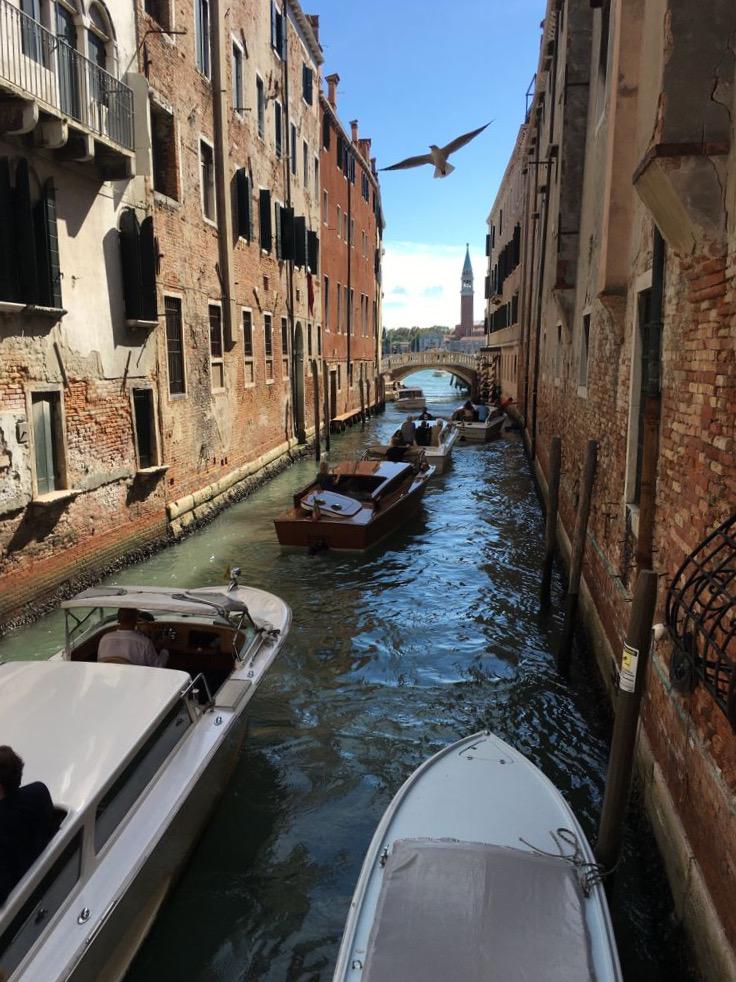 Venedig: Wassertaxi-Stau Fliegen müsste man können