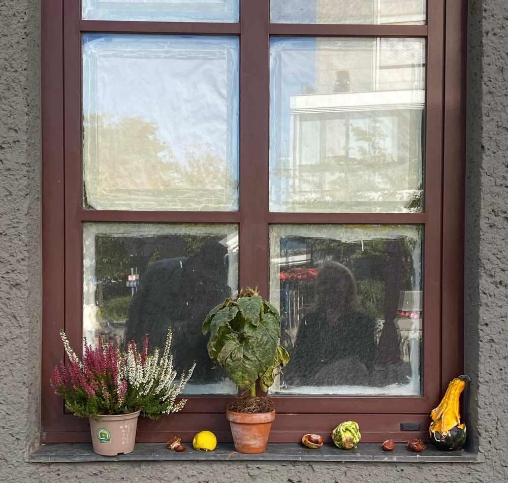 Spiegelung mit Kürbis, Kastanien, Sonnenblume, Erika, Margareta