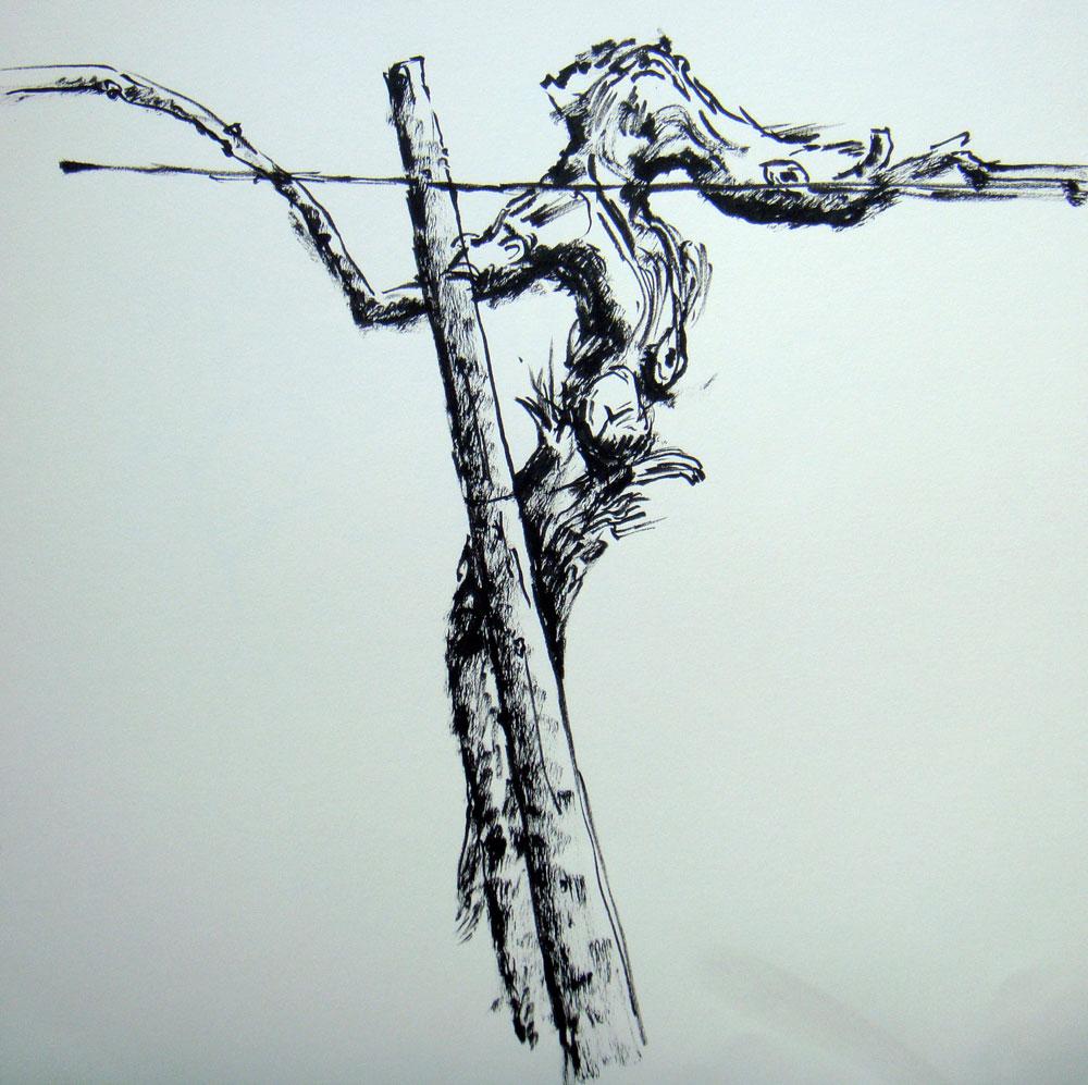 Weinstock-Zeichnung-2