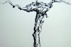 Weinstock-Zeichnung