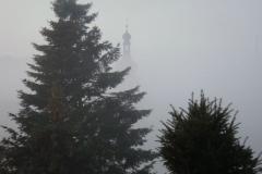 Geras im Nebel